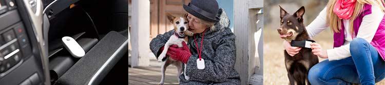 Localizador GPS para perros, personas mayores, coches